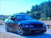 2003 ford Ford Mustang SVT Cobra